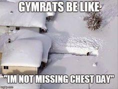 gymrats