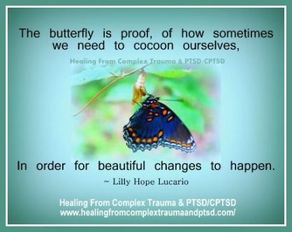 butterfly cocoon-002