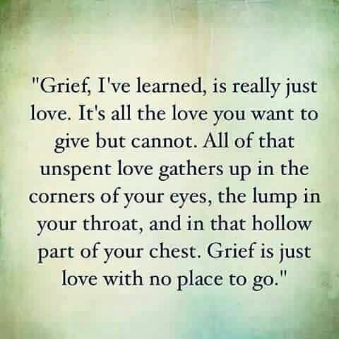 Grief Is Love With No Place To Go Lilly Hope Lucario